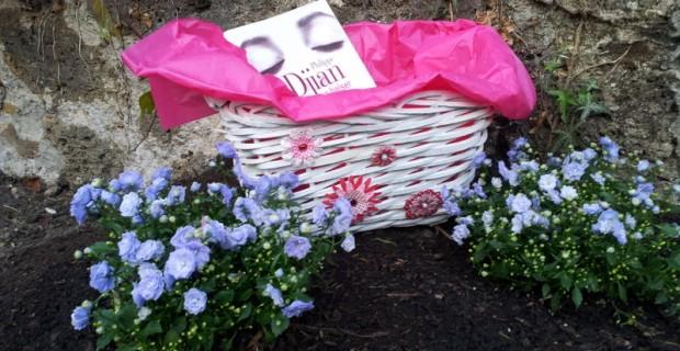 Un panier à customiser dans mon jardin #Fly