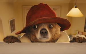 Paddington, l'ours qui vous fera craquer